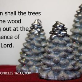 God's Christmas Tree